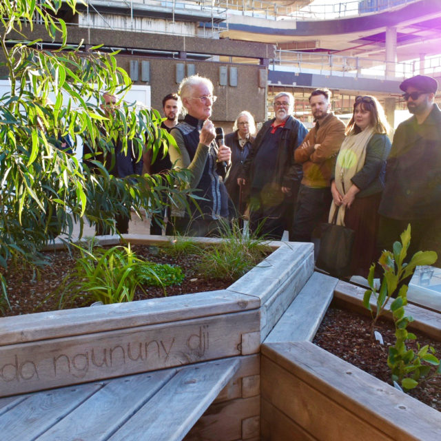 Waraburra Nura Garden Launch
